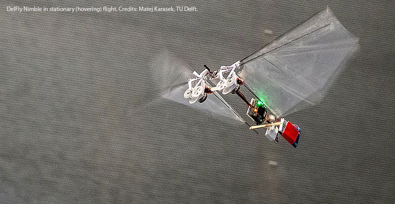 DelFly Nimble in stationary (hovering) flight. Credits: Matej Karasek, TU Delft.